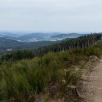 20180408 '18 Trail des Sangliers - 35km - Pierrier-2